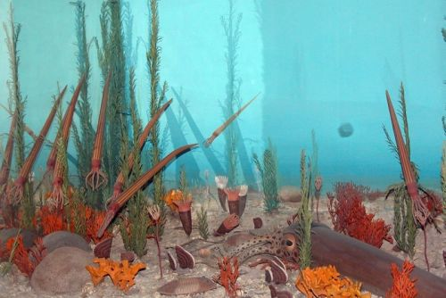 If you liked the Cambrian Explosion, you'll love the Ordovician Radiation