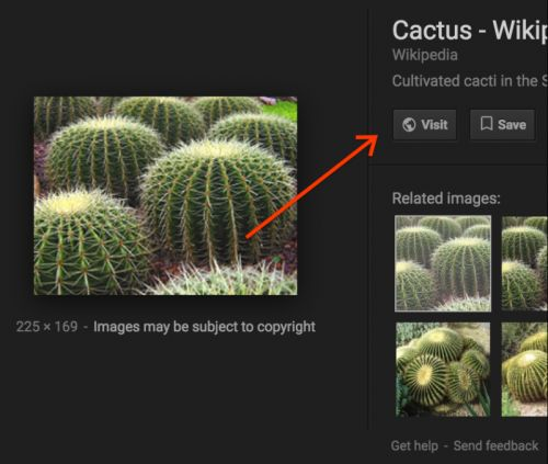 Google Takes Away The 'View Image' Button In Search