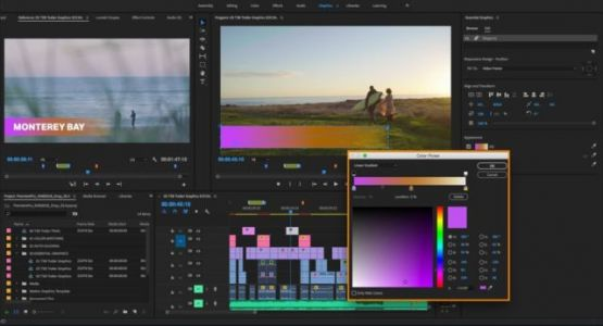 Man Sues Adobe Over Bug That Deleted His Work