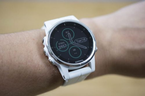 Garmin Fenix 5S Plus review: Niche both propels it and holds it back