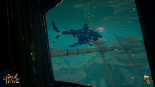 Sea of Thieves servers crushed under wave of would-be pirates