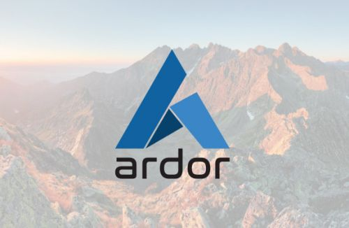Ardor could fix key blockchain weaknesses - if it can get its message out