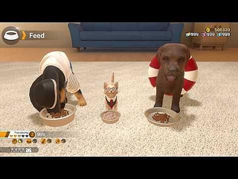 Little Friends: Dogs & Cats Brings Nintendogs-Style Fun to the Switch