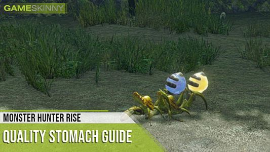 Monster Hunter Rise: How to Get Quality Stomach