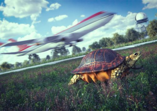 Corporate innovators: How to get your slow organization moving faster