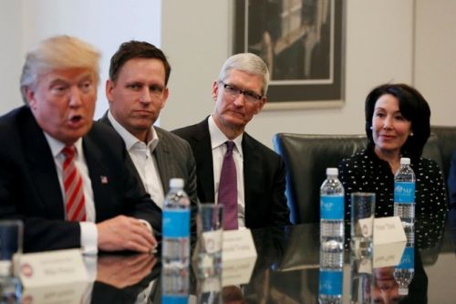 Tim Cook Named to President Trump's American Workforce Policy Advisory Board