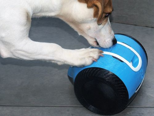 This little robot lets you talk to and play with your dog from miles away