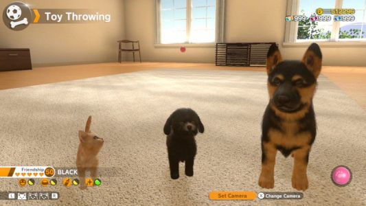 Little Friends: Dogs & Cats for Nintendo Switch - What you need to know