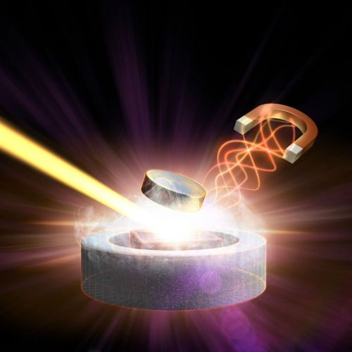 """Random"" noise pours cold water on room-temperature superconductivity"