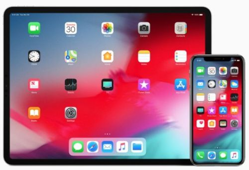 Devs Required To Support New iPad Pros, iPhone Xs Max By March 2019