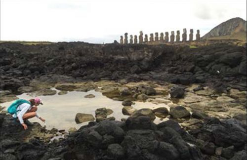 Easter Island's statue builders drank from the sea