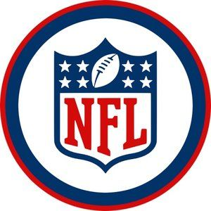 The Rookie's Guide to the NFL is a handy new Alexa skill released in time for the playoffs
