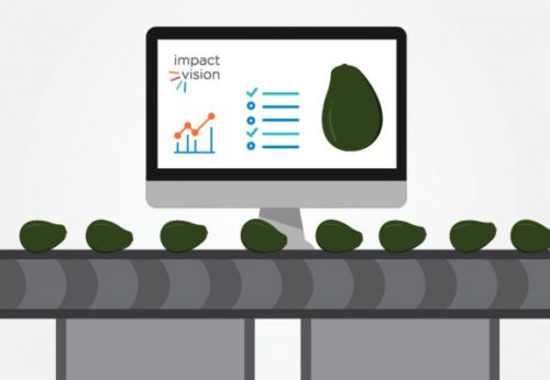How ImpactVision is using AI to detect unripe or contaminated food