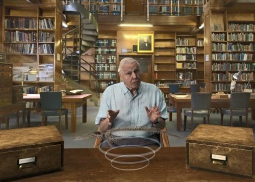 David Attenborough's VR experience Hold the World, lands on Oculus Rift