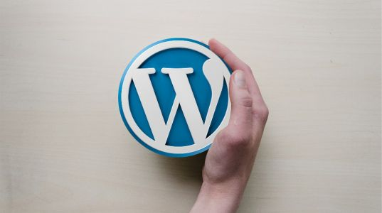 What is WordPress hosting? Learn more about the world's most popular CMS