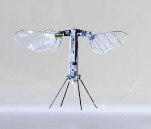 Flying, insect-like robot flits closer to independent flight