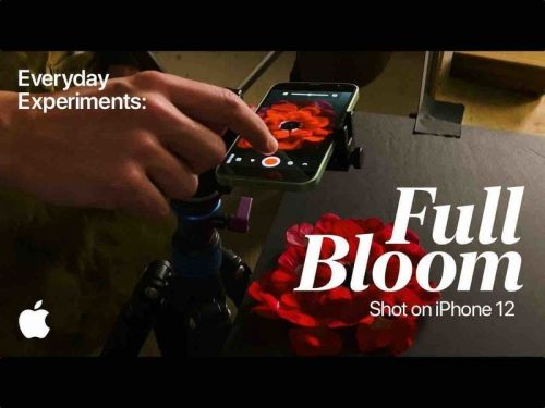 New 'Shot on iPhone' video brings flowers to life in creative ways
