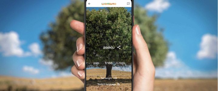 Google Arts & Culture releases Woolaroo tool for indigenous languages