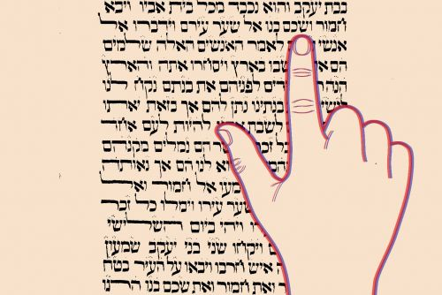 Torah, From a Transgender Perspective